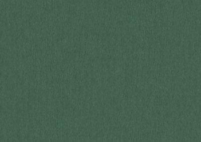 A4835 - Cypress