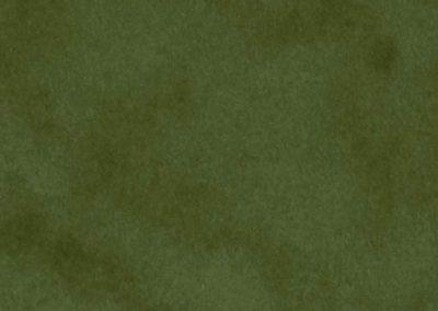 7190 - Olive